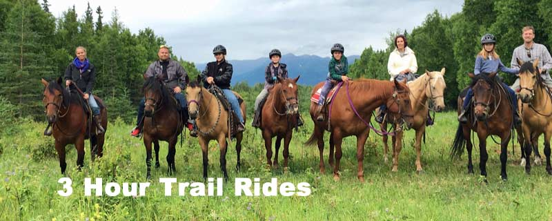 3 Hour Trail Rides Alaska